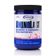 Gaspari Nutrition AminoLast (30 serv) (25% OFF - short exp. date)