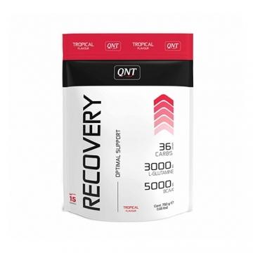 Qnt Recovery Powder (750g)