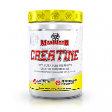 Interactive Nutrition Mammoth Creatine (300g)