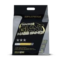 Stacker2 Giant Mass Gainer (6800g)