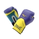 Everlast Pro Style Elite Glove (Purple/Yellow)