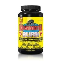 Interactive Nutrition Mammoth Burn Caps (120)