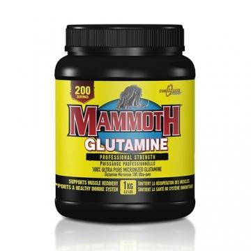 Interactive Nutrition Mammoth Glutamine (1000g)