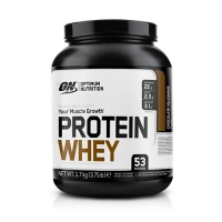 Optimum Nutrition Protein Whey (1700g) (25% OFF - short exp. date)